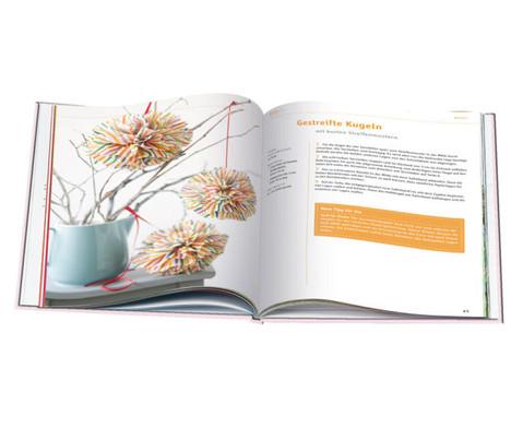 Buch Dekorative PaperPompons-2
