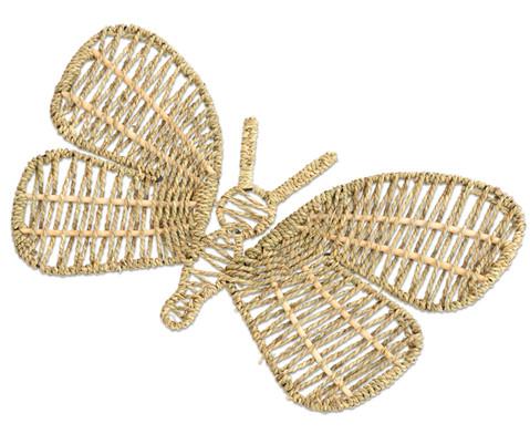 Web-Schmetterlinge  Libellen-4