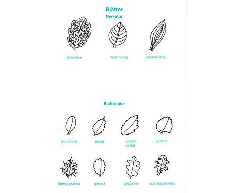 Der Pflanzendetektiv-5