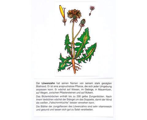 Der Pflanzendetektiv-10