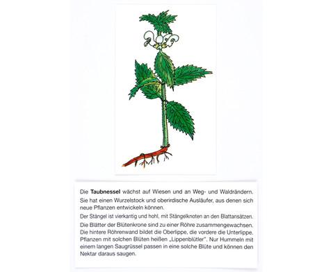 Der Pflanzendetektiv-14