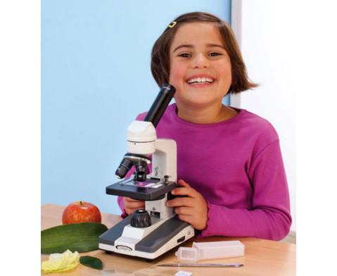 Compra Schulmikroskop LED-2
