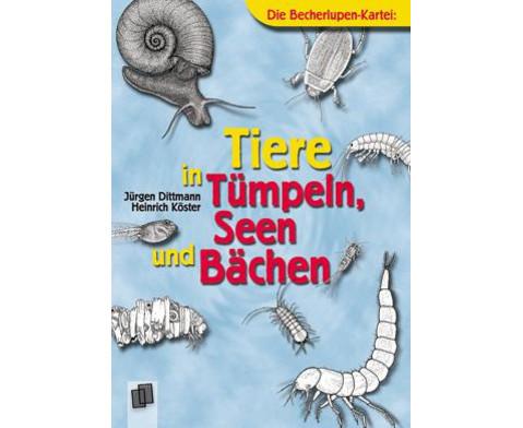 Becherlupen-Kartei Tiere in Tuempeln Seen und Baechen-1