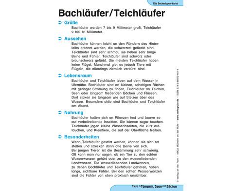 Becherlupen-Kartei Tiere in Tuempeln Seen und Baechen-3