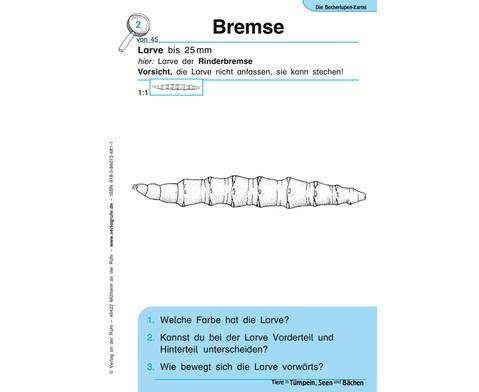 Becherlupen-Kartei Tiere in Tuempeln Seen und Baechen-4