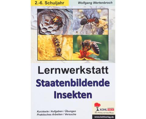Lernwerkstatt Staatenbildende Insekten - fuer 2-6 Klasse-1