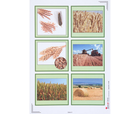 Lernwerkstatt Getreide-2