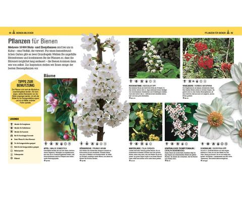 Das Bienen Buch-6
