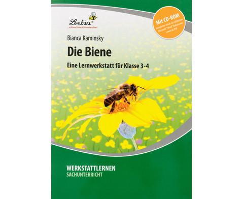 Lernwerkstatt Die Biene