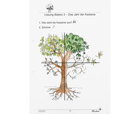 Lernwerkstatt Unsere Laubbaeume-3