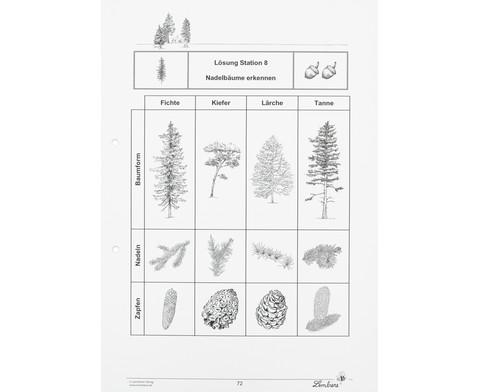 Lernwerkstatt Der Wald mit CD-ROM-4