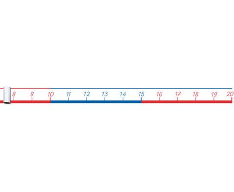 Zahlenstrahl bis 100-5