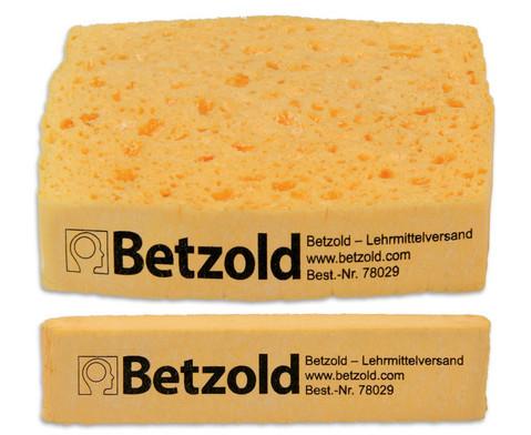 Betzold Quellschwamm-1