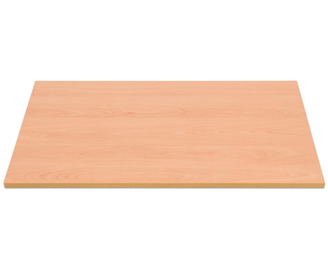 Flexeo Fachboden 603 x 325 x 19 mm inkl 4 Fachtraegern