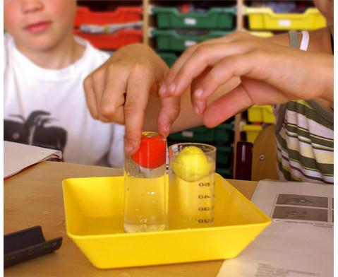 Experimentierbox Schwimmen und Sinken-3