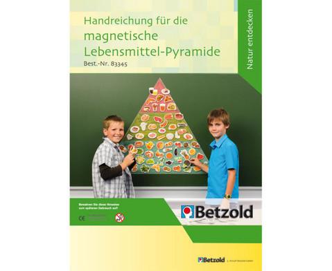 Die magnetische Lebensmittel-Pyramide-2