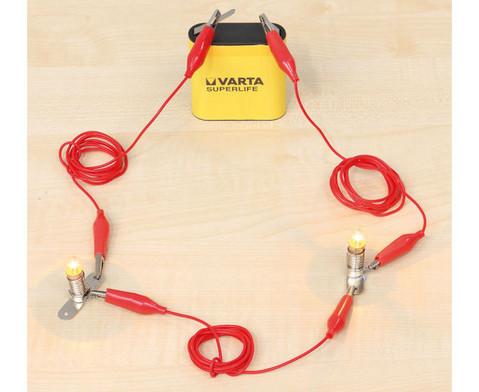 Betzold Experimentier-Koffer - Elektrizitaet und Stromkreise-4