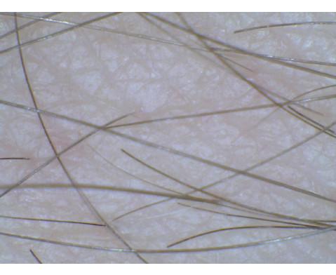 Easi-Scope Digital-Mikroskop-2