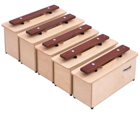 Spar-Set mit 5 Kontrabass-Klangbausteinen-2