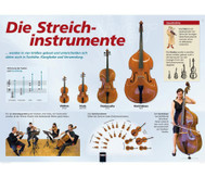Poster - Streichinstrumente