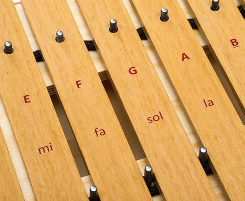 Studio 49 Bass-Xylophon Serie 1000 Grillodur-3