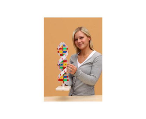 Schematisches DNS Modell-2