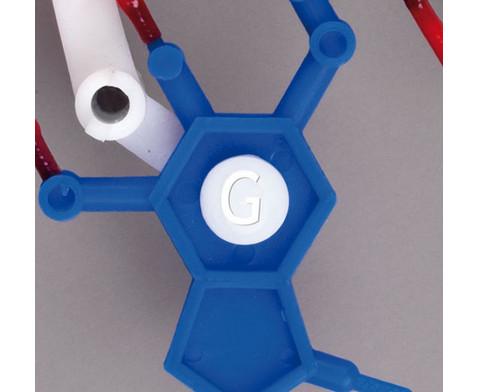 DNS Modell gross-3