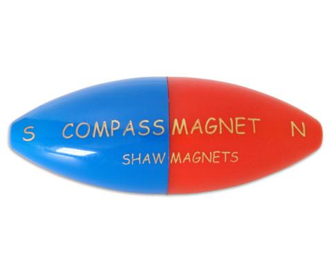 Schwimm-Kompass-1