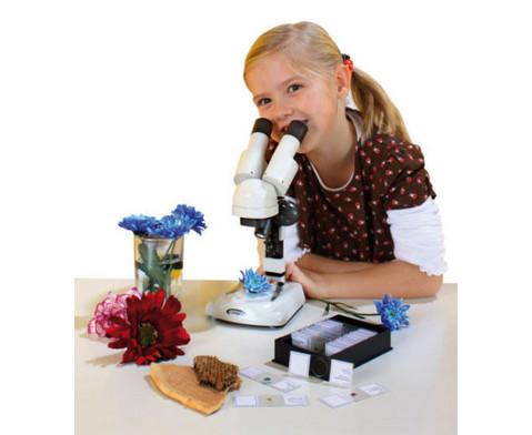 Stereo-Mikroskop fuer Einsteiger-2