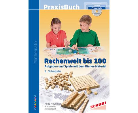 Praxisbuch Rechenwelt bis 100-1