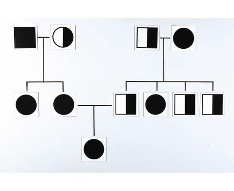 Genetische Karten magnetisch