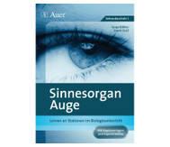 Stationentraining: Sinnesorgan Auge