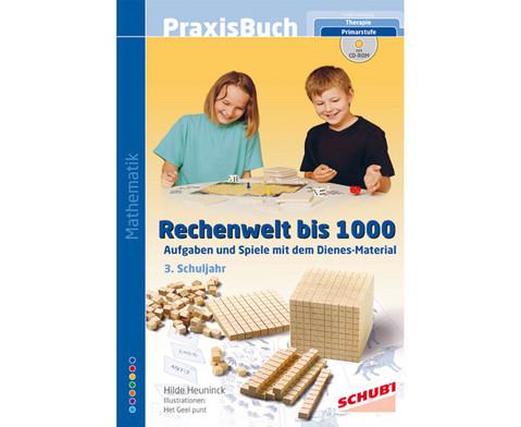Praxisbuch Rechenwelt bis 1000-1
