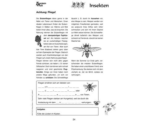 Themenheft Insekten-4