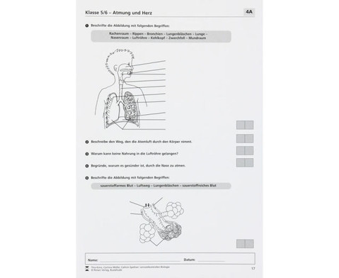 Lernzielkontrollen Biologie-3