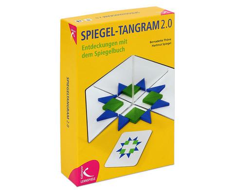 Spiegel-Tangram 20-1