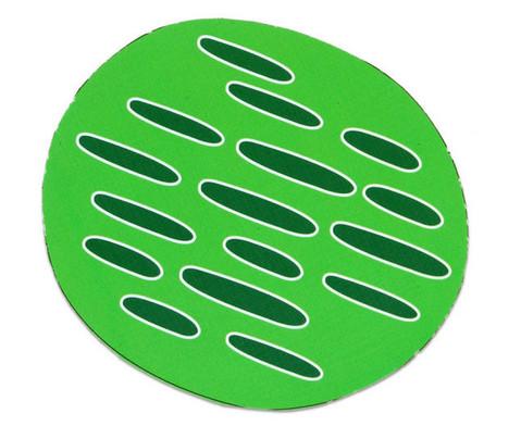 Magnetische pflanzliche Zelle-4