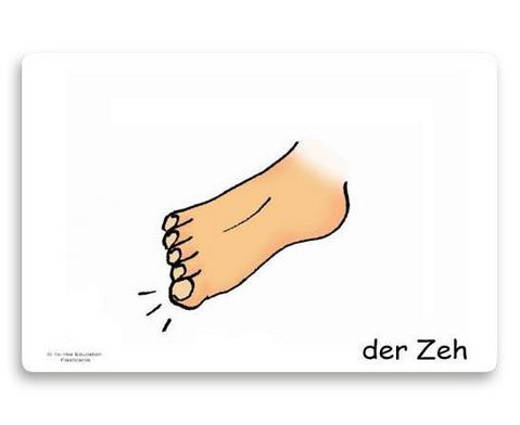 Bildkarten Koerperteile-6