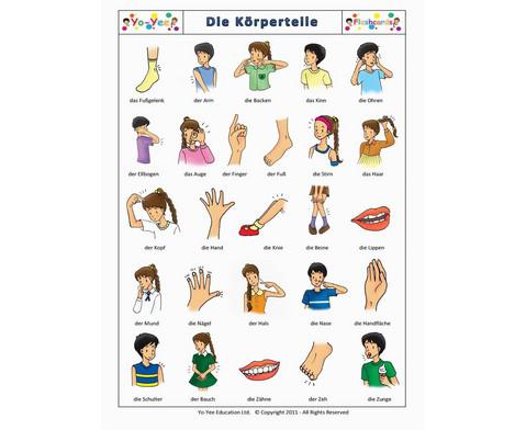 Bildkarten Koerperteile-7