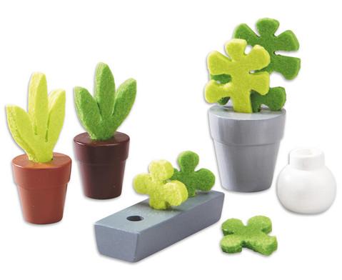 Pflanzen 5-tlg-1