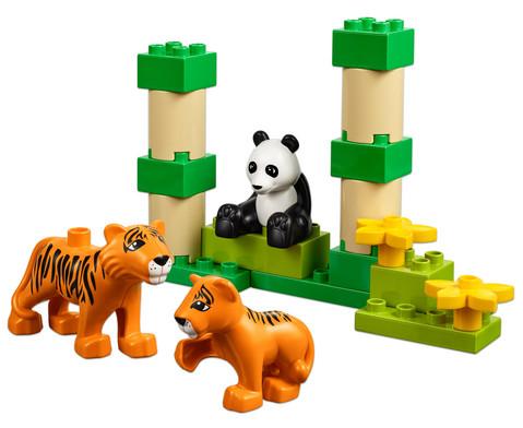 LEGO DUPLO Wilde Tiere Set-4