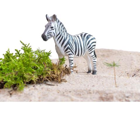 Afrikanische-Tiere Set 10-tlg-3