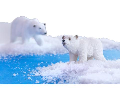 Arktische Tiere 6-tlg Set-4