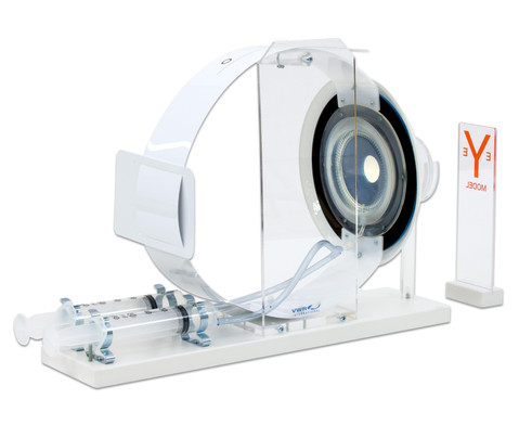Funktionsmodell des Auges-3