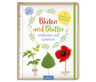 Blüten und Blätter - entdecken und sammeln