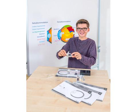 Das Auge magnetisches Tafelmodell-2