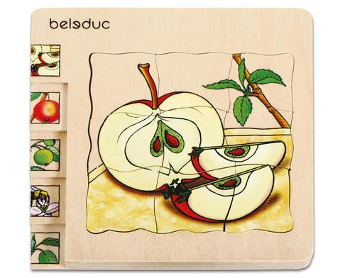 Lagen-Puzzel Apfel-1