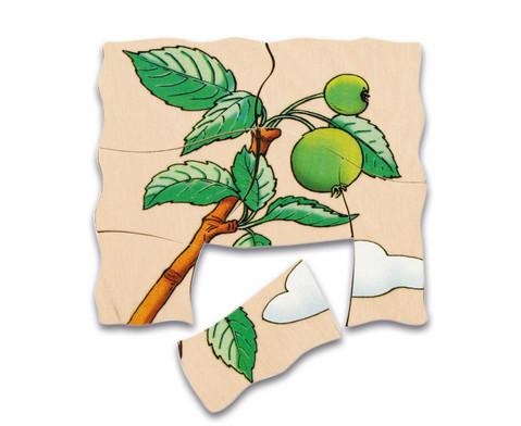 Lagen-Puzzel Apfel-4
