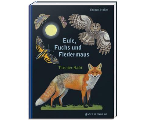 Eule Fuchs und Fledermaus