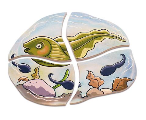 Lagen-Puzzle Frosch-4